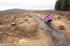 Llandegla, North Wales. More forestry lands.