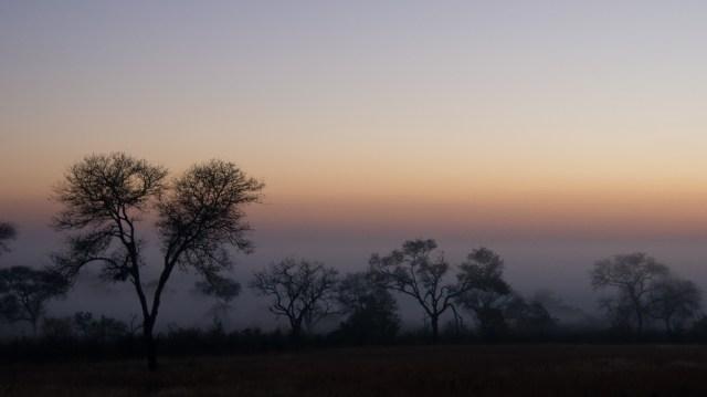 Day break - Arathusa Safari Lodge, South Africa