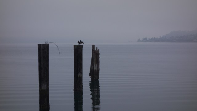 Pier reflections on Puget Sound