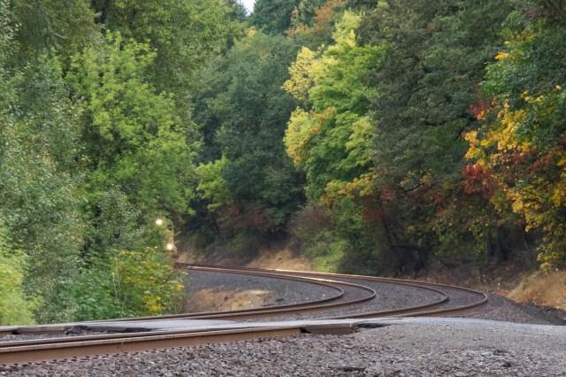 Train coming through the trees at Ridgefield Bird Sanctuary north of Vancouver, Washington