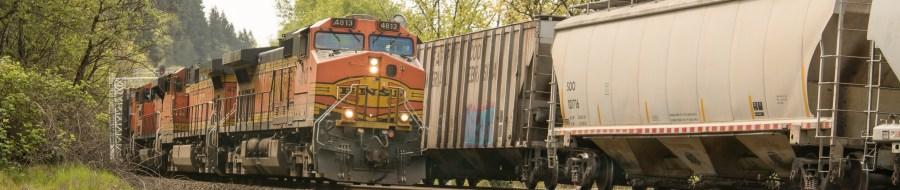 Trains at Ridgefield, Washington