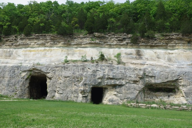 Caves with nesting birds in Pacific, Missouri