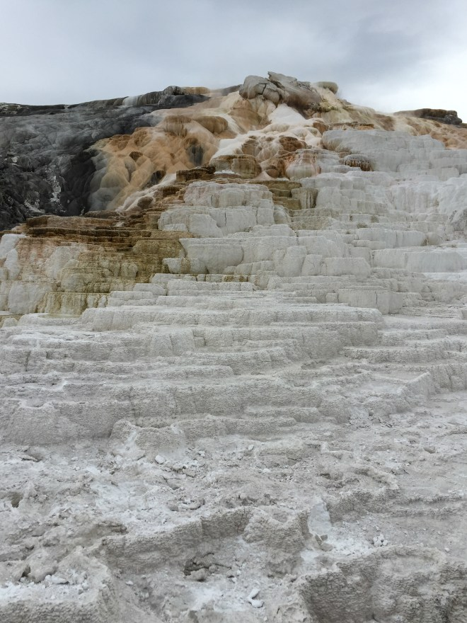 Mineral deposit buildup at Yellowstone National Park