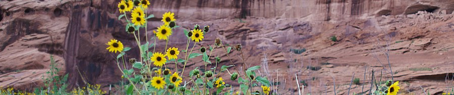 Where The Freeways Don't Go – Canyon De Chelly