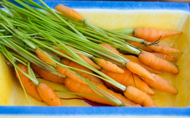 Baby carrots: one of the hors d'oeuvres