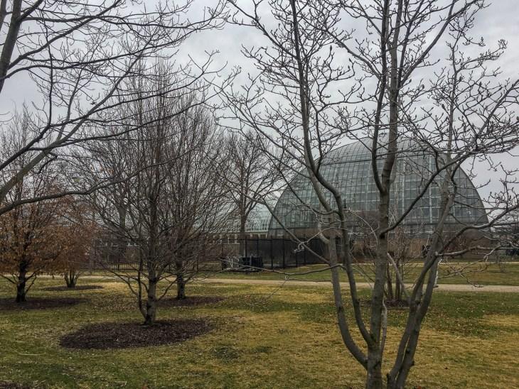 Chicago Garfield Park Conservatory