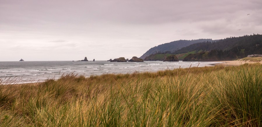 An Afternoon at Cannon Beach