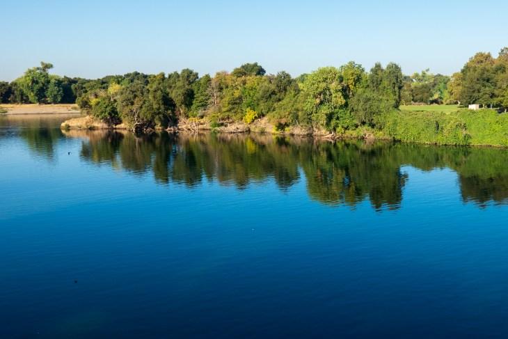 2018-09-21 Sacramento River Walk__RXC0241