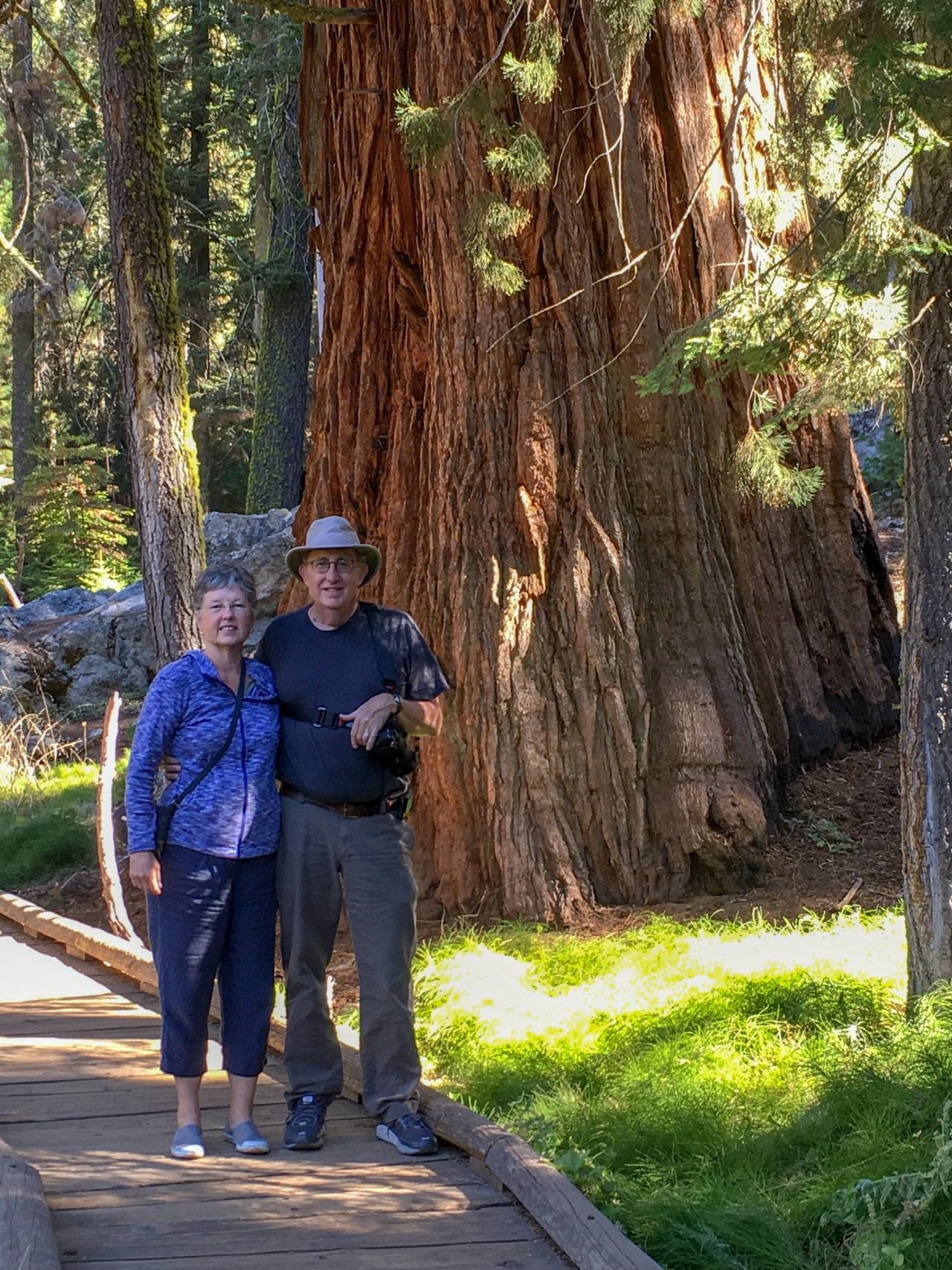 Carla and Howard on the Big Trees Trail
