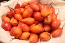 Des tomates d'arbres
