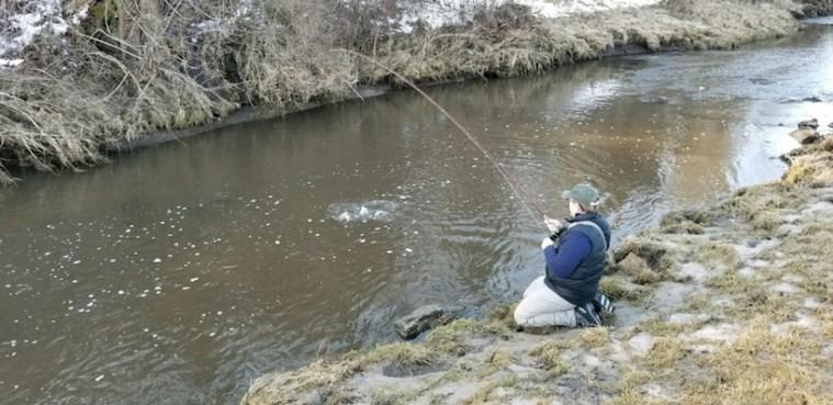 fish streamers