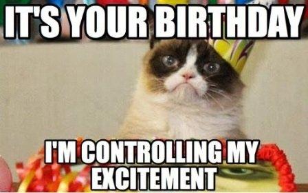 Cool Cats Birthday Fancy Pants