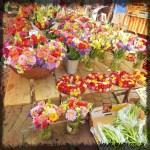 ...und wer nichts zu Essen kauft, der muss zumindest ein paar Blümchen als Gruß aus dem schönen Aschaffenburg mit bringen!