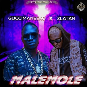 DOWNLOAD MP3: Guccimaneeko ft. Zlatan - Malemole (Prod. Sarz),