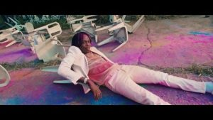 Fireboy DML Vibration mp4 download