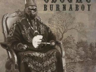 Burna Boy Odogwu MP3 download