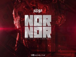Nidae Nor Nor Mp3 Download