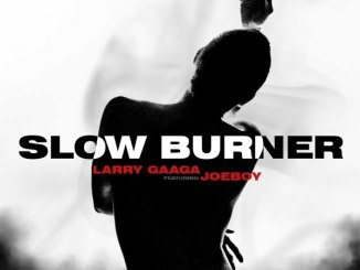 Larry Gaaga ft. Joeboy – Slow Burner