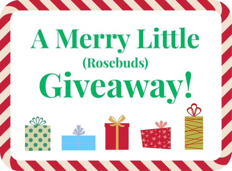 Holiday Giveaway Announcement!