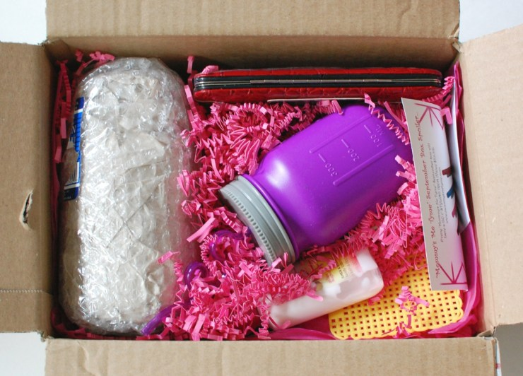 Mommy's Me Tyme August box for review