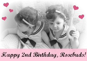 Happy 2nd Birthday, My 2 Little Rosebuds!