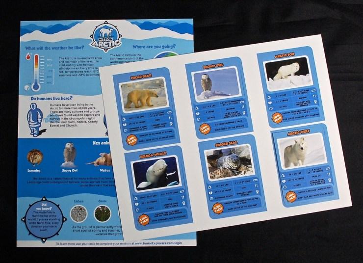 Junior Explorers Arctic