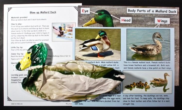 blow up mallard duck