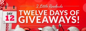 giveaway day 12