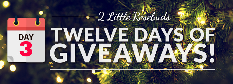 giveaway day 3