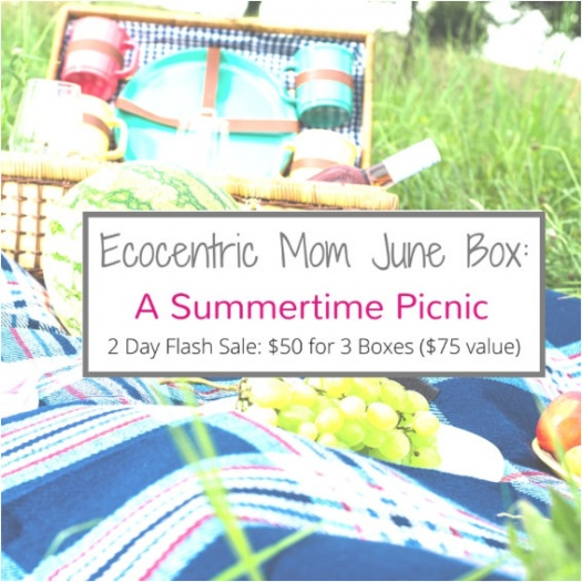 Ecocentric Mom coupon
