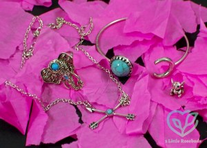 TrinityBox July 2016 Jewelry Subscription Review & Free Charm Offer