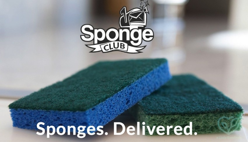 Sponge Club free offer