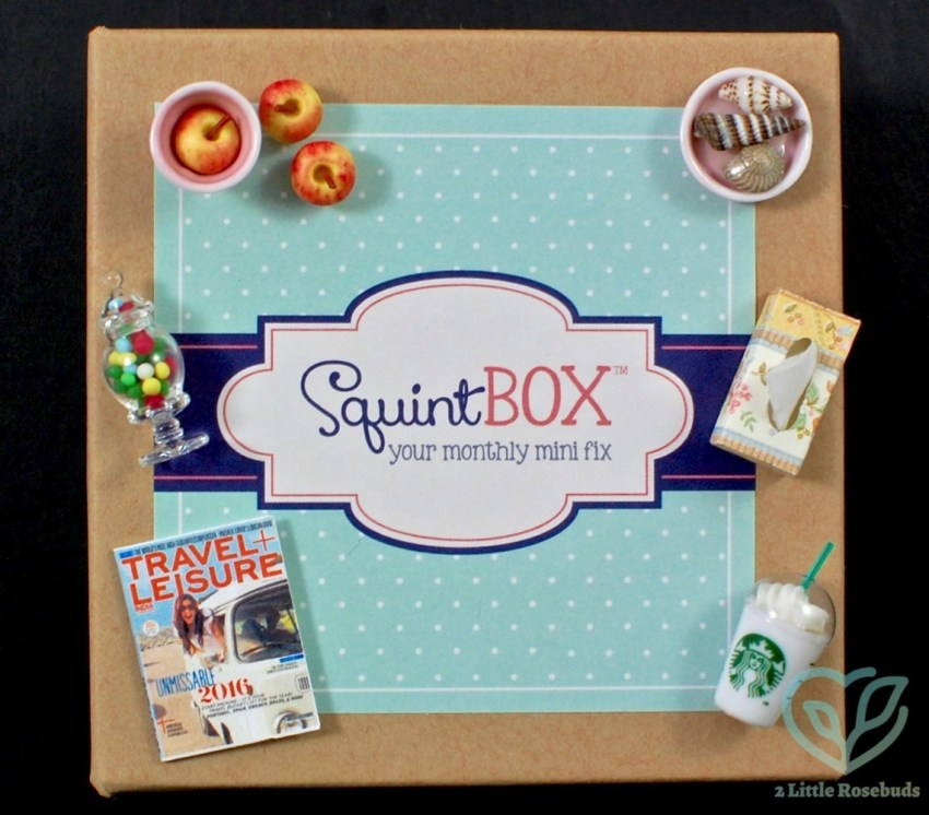 SquintBox July 2016 Miniatures Subscription Box Review