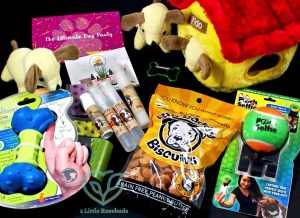 Surprise Pawty September 2016 Subscription Box Review & Coupon Code