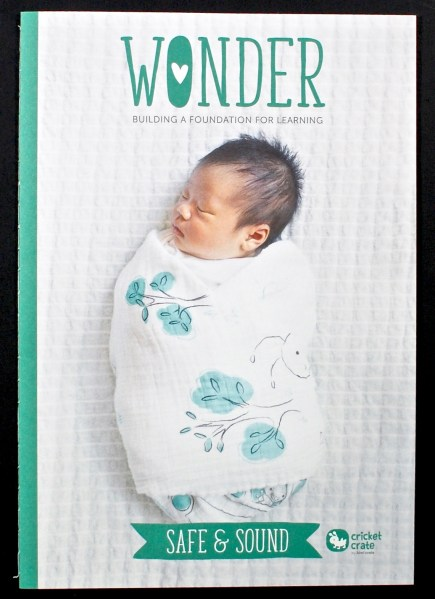 Wonder Safe & Sound