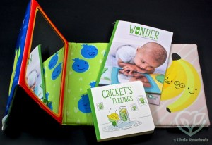 Cricket Crate January 2017 Subscription Box Review & Coupon Code
