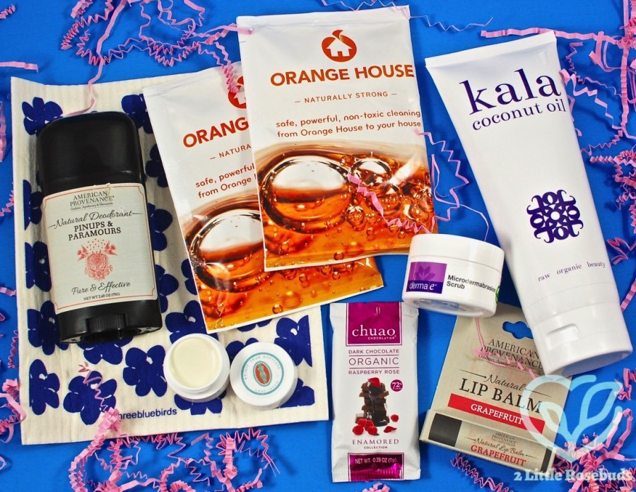 January 2017 Ecocentric Mom review