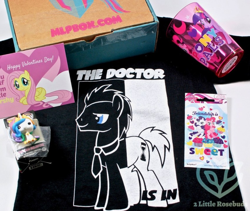 MLP Box February 2017 Subscription Box Review & Giveaway!