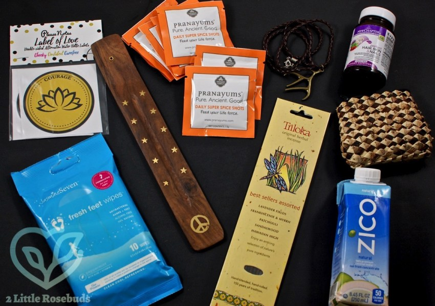 March 2017 Buddhibox review