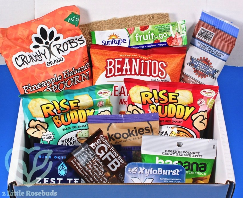 March 2017 SnackSack review