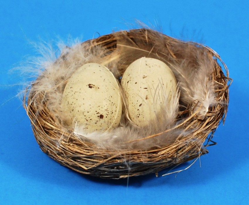 Three bird nest coupon code
