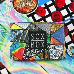 July 2017 Sox Box review
