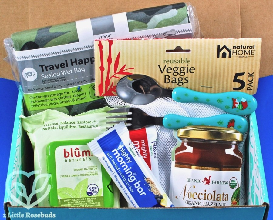 November 2017 Ecocentric Mom review