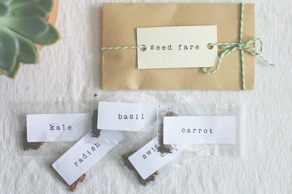 Seed Fare