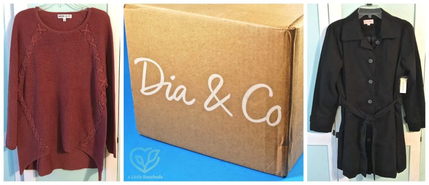 Dia & Co review
