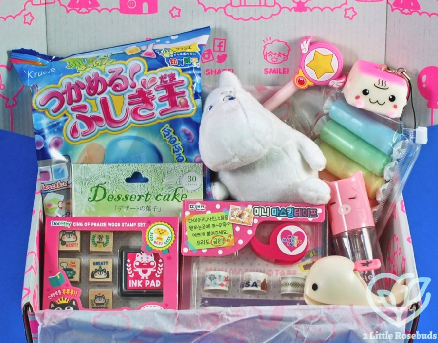 January 2019 Kawaii Box review
