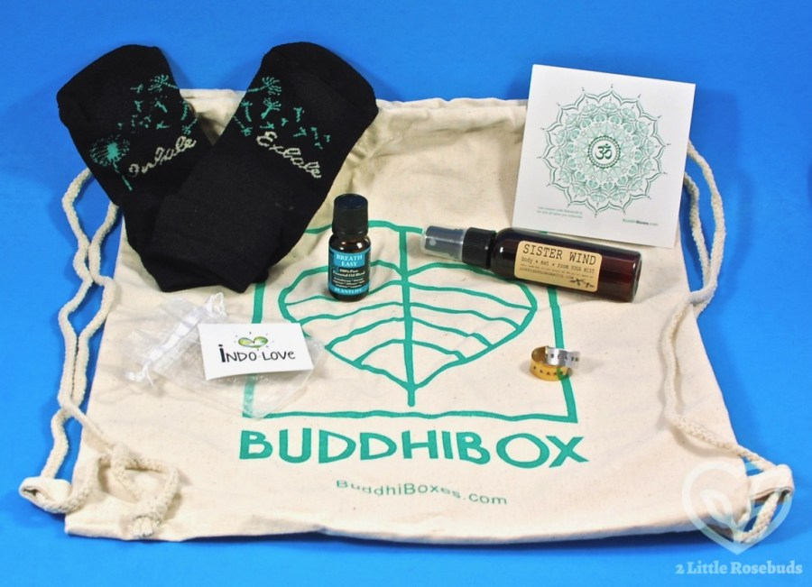 September 2019 Buddhibox review