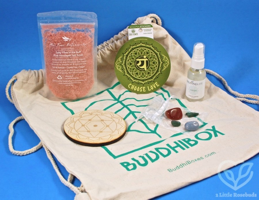 February 2020 Buddhibox review
