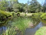 Gorgeous park in Scottsdale near the Caravan Park.