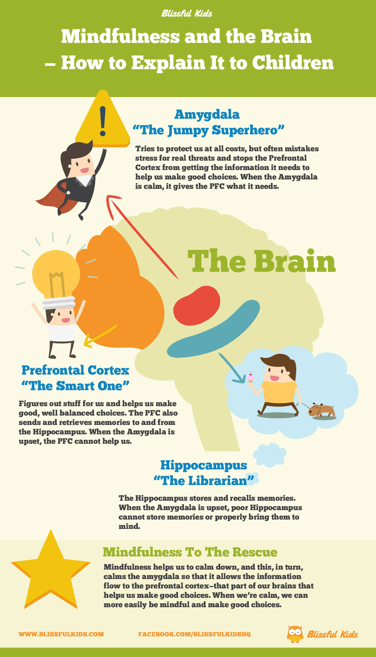 Mindfulness And The Brain How To Explain It To Children